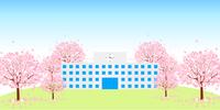 桜 学校 春 背景