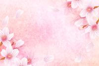 桜 年賀状 和柄 背景