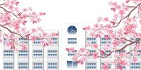 学校 桜 春 背景