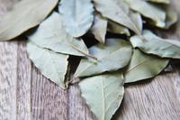 ドライハーブ ローリエ 月桂樹の葉