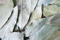 一面に敷き詰めたドライハーブ ローリエ 月桂樹の葉