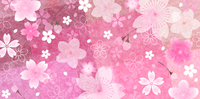桜 和柄 春 背景