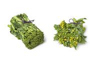 Fresh baby broccolini