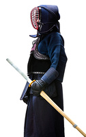 Profile of equipped kendo fighter with shinai