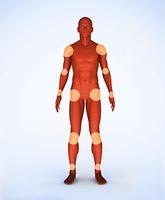 Joints of a red digital skeleton