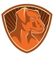 Sheepdog Border Collie Shield Retro