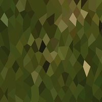 Jungle Green Abstract Low Polygon Background
