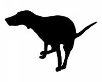 Hund beim Losen