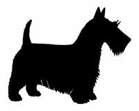 Schwarze Silhouette von einem Schottischen Terrier