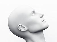 White Male Head - 23