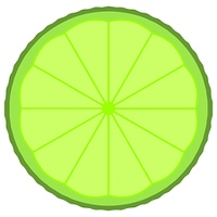 Lime fruit slice