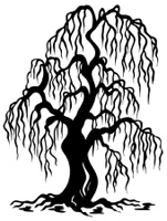 Willow tree silhouette