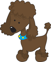 Poodle Brown