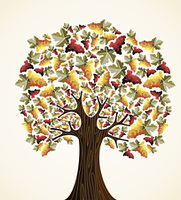 Wine and grapes tree