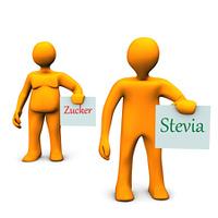 Stevia Zucker