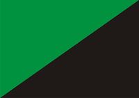 Green anarchism flag