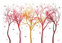 autumn trees with falling leaves