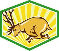 Stag Deer Charging Side Cartoon