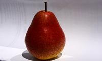 Die wohlschmeckende Birne