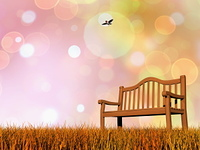 Peaceful bench - 3D render