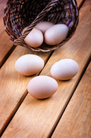 Eggs in a basket on a wooden background