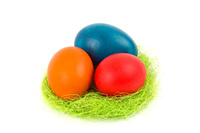 Easter eggs in the nest, on a white background