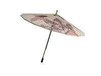Japanischer Sonnenschirm freigestellt