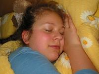 Langschlafmaus