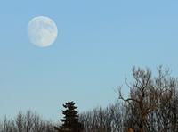 Der Mond steigt...