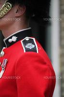 detail of a Grenadier Guard's uniform