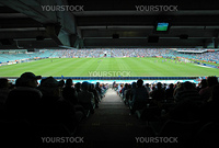 soccer stadium, soccer stadium, green playfield, players, fans in shadow