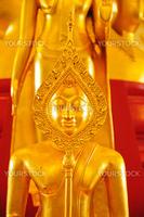 Golden buddha statue at thai temple
