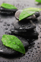 wellness concept with zen stone and green leafs