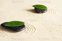 zen garden with black stones or roch and green leaves