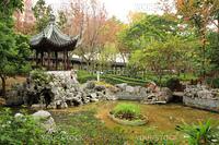 a chinese garden