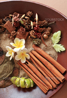 Natural herbal ingredient prepared for the ultimate aromatherapy and spa sessions.