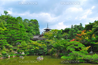 Typical Japanese garden with temple pagoda and pond. Depicting serenity, peace, zen, and the essence of Japanese culture.