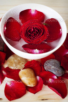 Close up rose and pebbles spa concept
