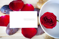 Rose, pebble and a blank card.