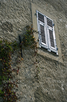 Window in the medieval house with the folwers growing on the wall