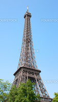Perspective of the Eiffel tower with trees