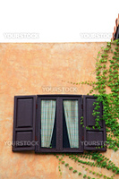 open wooden windows in Italian style with plant, vertical