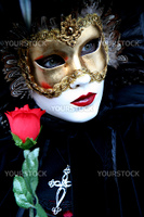 Masked lady with a rose during the Venice carnival, portrait,