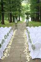 Expectation of wedding in fine park with a pond on white chairs, ミイム錦・ひセミオミスミスム錦・beside