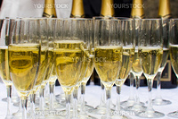 Lot of glasses of champagne arranged in lines. Outdoor shot. Natural light.