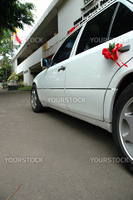 car that used for wedding ceremony and other ocassion party