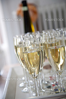 Glasses filled with champagne ready for the toast
