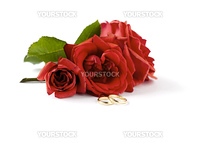 wedding ring and roses on a white background