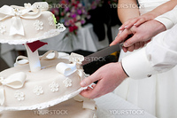 hands of bride and groom cut of a slice of a wedding cake
