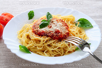 Big plate of pasta with tomato basil sauce and parmesan